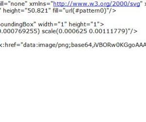 Error de concepto al usar formato SVG